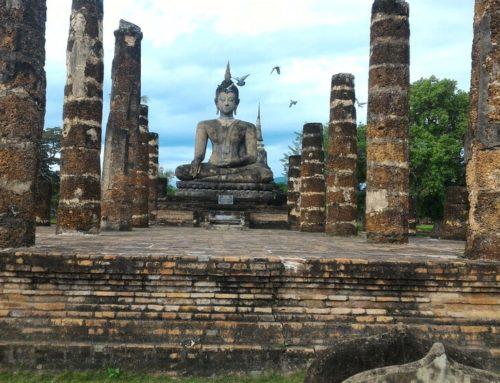 Meditazione Zen: Come Praticare un Arte Millenaria