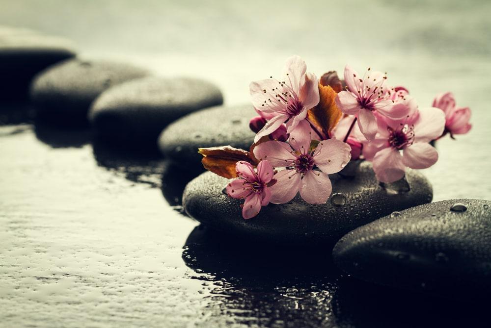 i mantra per la meditazione trascendentale, sassi sul ruscello
