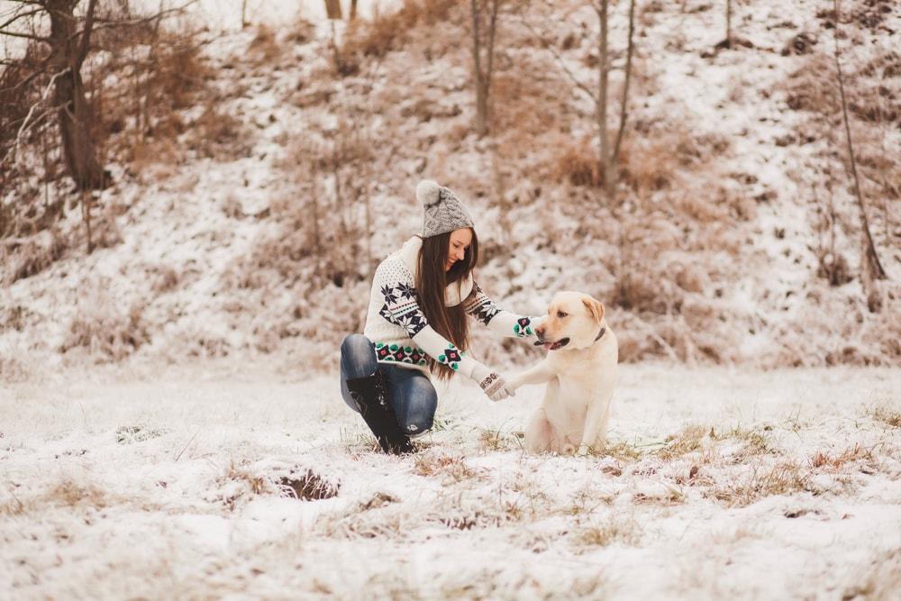 metta amore meditazione della gentilezza amorevole foto di ragazza con un cagnolino bianco