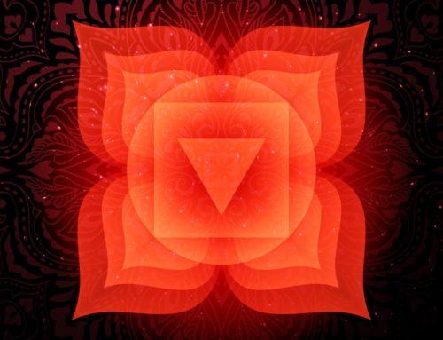 Muladhara: Il Chakra della radice (Primo Chakra)