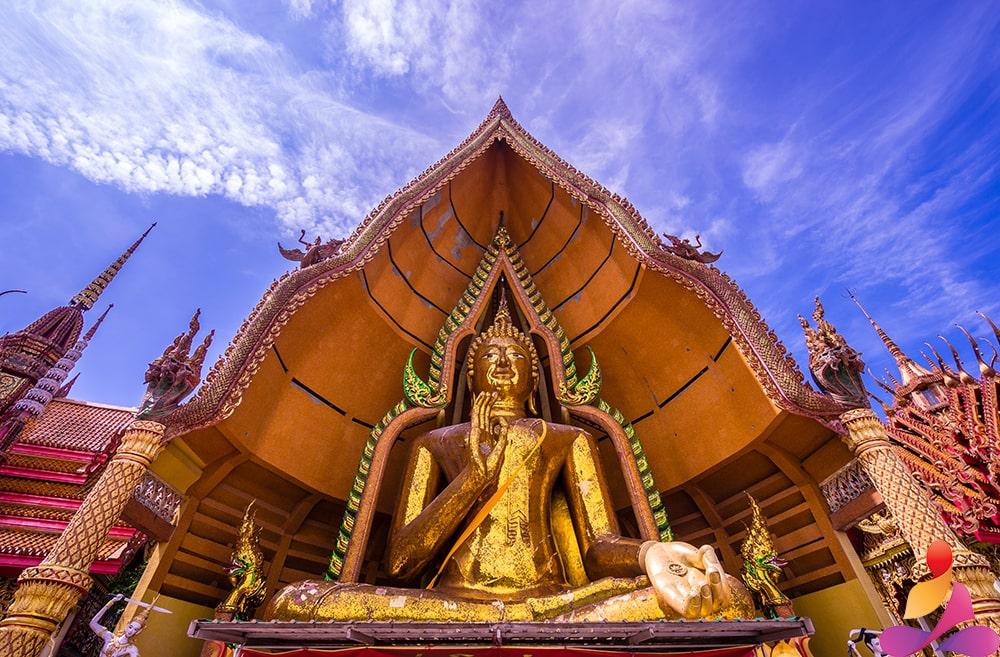 meditazione mindfulness benefici