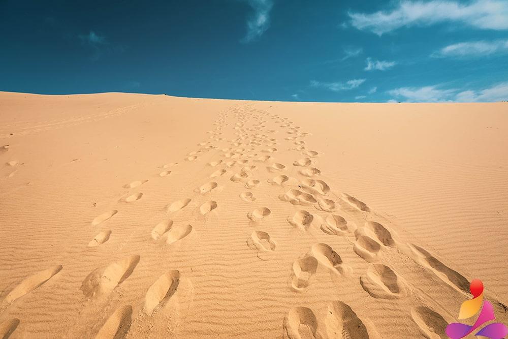 immagine del deserto