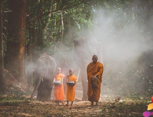 Meditazione Camminata: Benefici e Guida Pratica